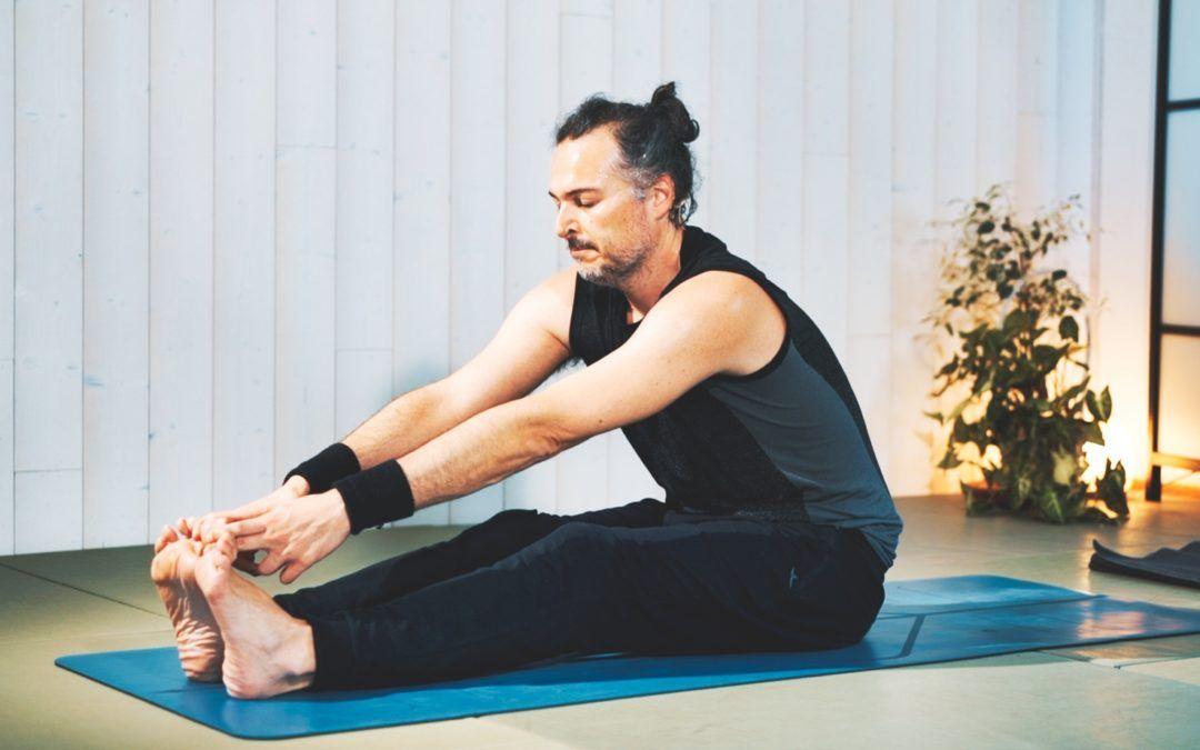 Ashtanga Yoga, media serie primaria